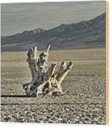 Antelope Island Stump Wood Print