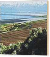 Antelope Island Wasatch Mountains Utah Wood Print