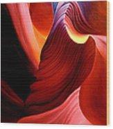 Antelope Magic Wood Print