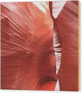 Antelope Passage Wood Print