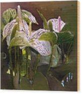 Anthutium Wood Print
