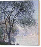 Antibes Seen From The Salis Wood Print