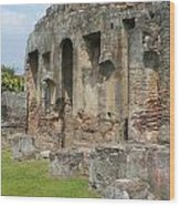 Antigua Ruins Xvi Wood Print