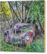 Antique Car With Trees In Windshield Wood Print