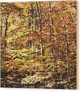 Antique Fall Wood Print