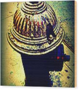 Antique Vintage Fire Hydrant - Multi-colored Wood Print