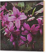 Antique Floral  Wood Print
