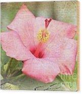 Antique Hibiscus Wood Print