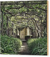Antique Pergola Arbor Wood Print