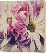 Antique Pink And White Daisies Wood Print