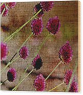 Antique Style Pink Floral Wood Print