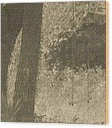 Antique Swing Wood Print