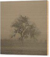 Antique Tree Wood Print