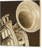 Antique Trumpet Wood Print
