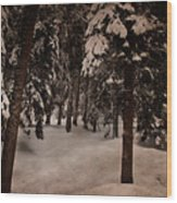 Antique Woodscape Wood Print