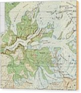 Antique Yosemite National Park Map Wood Print