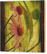 Antiqued Cone Flowers Wood Print