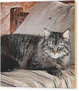 Antiquity Kitty Wood Print