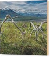 Antlers On The Hill Wood Print