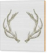 Antlers Wood Print
