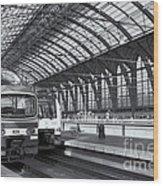Antwerp Central Station II Wood Print