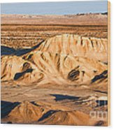 Anza Borrego Coachella Valley By Diana Sainz Wood Print