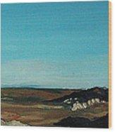 Anza - Borrego Desert Wood Print