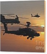 Apache Escort  Wood Print
