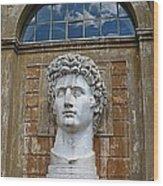 Apollo Statue At The Vatican Wood Print
