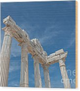 Apollo Temple Wood Print