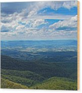 Appalachain Trail View Wood Print