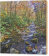 Appalachian Highlands Wood Print