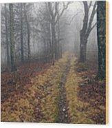 Appalachian Trail Fog Wood Print
