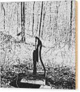Appalachian Well Pump Wood Print