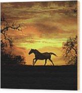 Appaloosa Sunset Wood Print