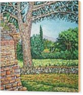 Appia Antica, View, 2008 Wood Print