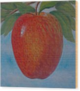 Apple 1 In A Series Of 3 Wood Print by Don Young