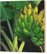 Apple Banana Wood Print