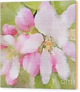 Apple Blossom Watercolour Wood Print
