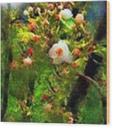Apple Tree In April Wood Print