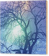 Apple Tree In Winter Fog Wood Print