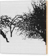 Apple Trees Wood Print
