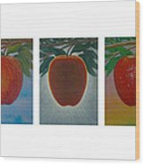 Apples Triptych Wood Print by Don Young