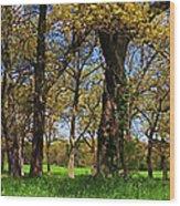 Appleton Farm Wood Print