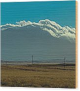 Grassland Approaching Humphreys Peak Wood Print