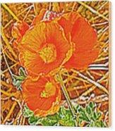 Apricot Globemallow In Vermilion Cliffs National Monument-arizona Wood Print