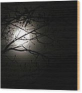 April 2013 Full Moon Wood Print