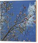 April Blossom Wood Print