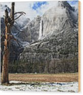 April Fools In Yosemite Wood Print