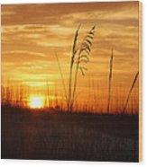 April Morning Grasses Wood Print